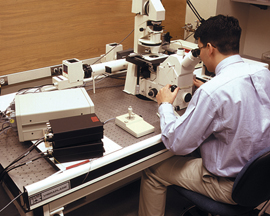 person using isolated_microscope